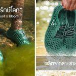 Vivabarefoot x Bloom ผลิตรองเท้ารักษ์โลก ทำจากสาหร่ายในน้ำเสีย